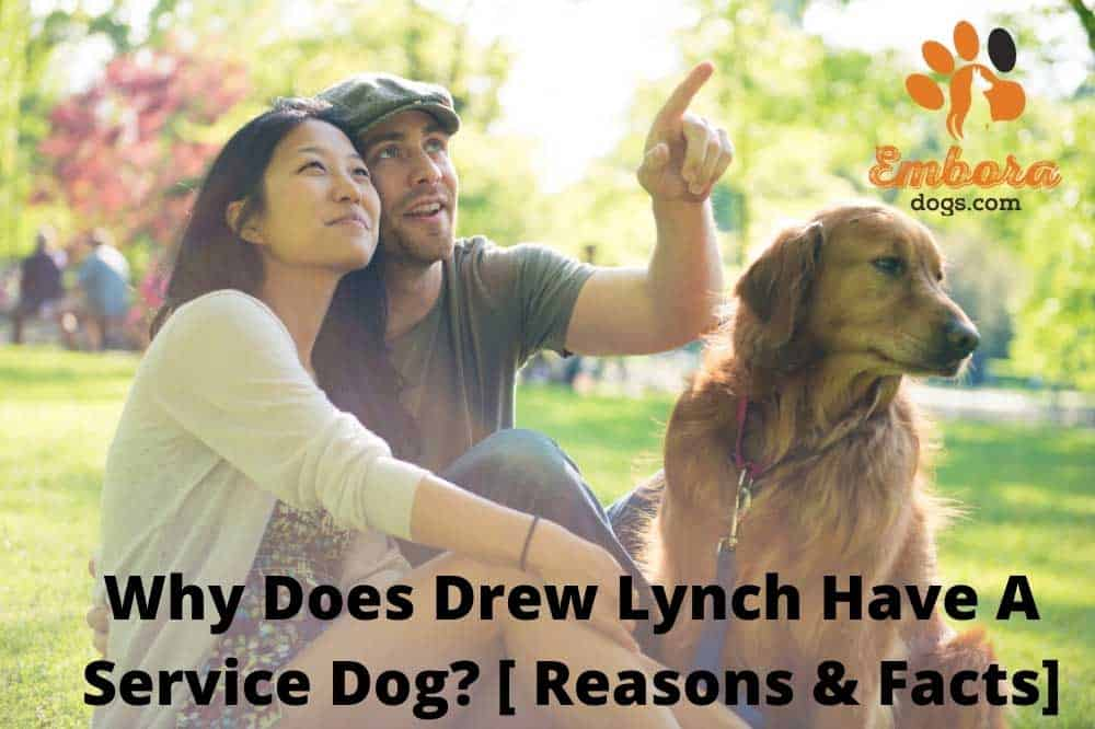 why does drew lynch have a service dog